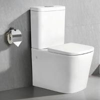 ROBINA RIMLESS BATHROOM TOILET SUITE WALL FACED BACK TO WALL SOFT CLOSE REN09
